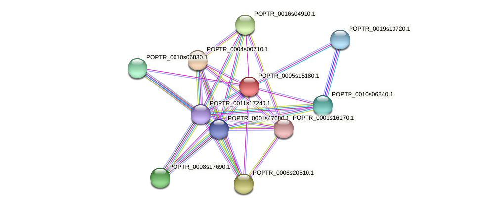 POPTR_0005s15180.1 protein (Populus trichocarpa) - STRING interaction network