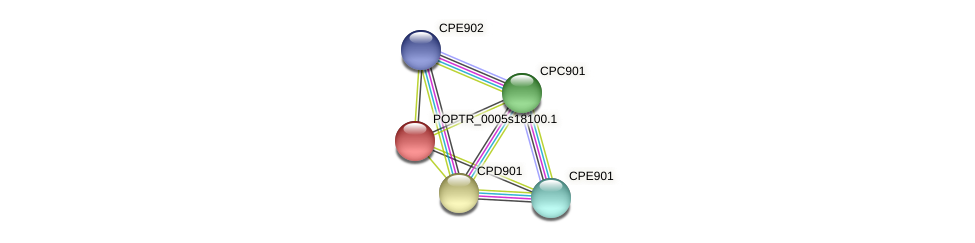 POPTR_0005s18100.1 protein (Populus trichocarpa) - STRING interaction network
