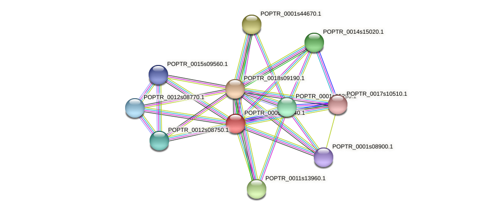 POPTR_0005s18240.1 protein (Populus trichocarpa) - STRING interaction network