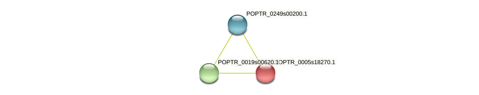 POPTR_0005s18270.1 protein (Populus trichocarpa) - STRING interaction network