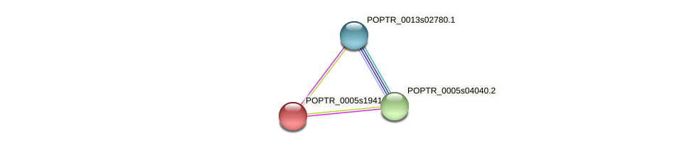 POPTR_0005s19410.1 protein (Populus trichocarpa) - STRING interaction network