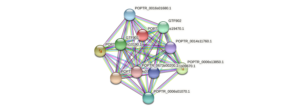 POPTR_0005s19470.1 protein (Populus trichocarpa) - STRING interaction network