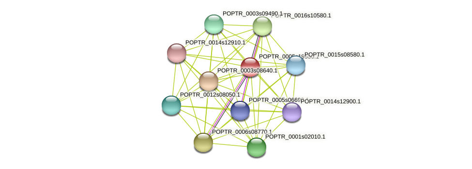 POPTR_0005s19550.1 protein (Populus trichocarpa) - STRING interaction network
