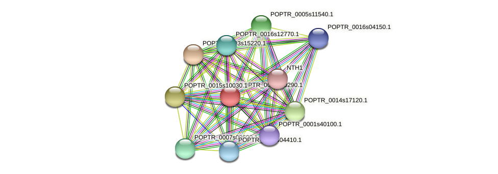 POPTR_0005s20290.1 protein (Populus trichocarpa) - STRING interaction network