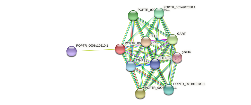 POPTR_0005s21670.1 protein (Populus trichocarpa) - STRING interaction network