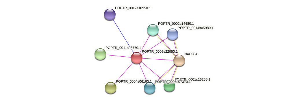 POPTR_0005s22050.1 protein (Populus trichocarpa) - STRING interaction network