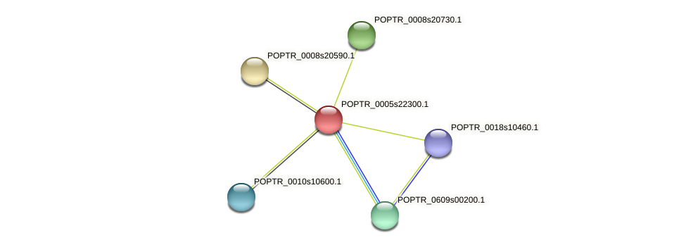 POPTR_0005s22300.1 protein (Populus trichocarpa) - STRING interaction network