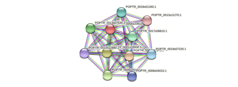 POPTR_0005s23910.1 protein (Populus trichocarpa) - STRING interaction network