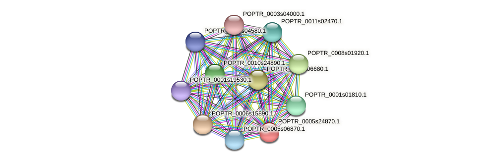 POPTR_0005s24870.1 protein (Populus trichocarpa) - STRING interaction network