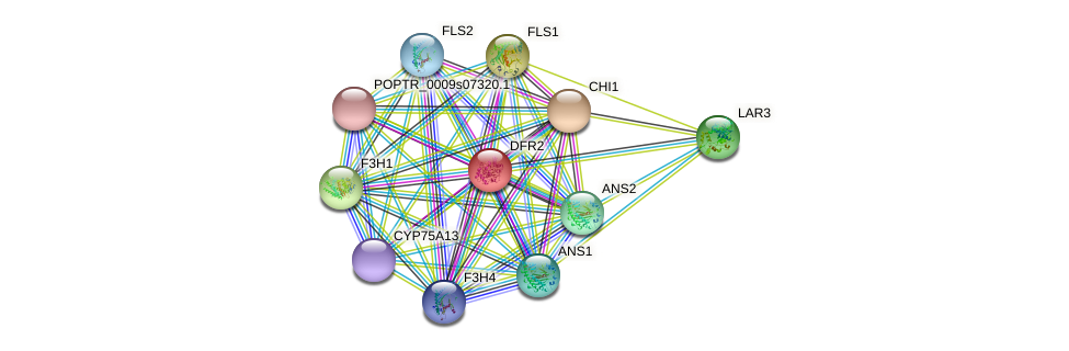 POPTR_0005s25110.1 protein (Populus trichocarpa) - STRING interaction network