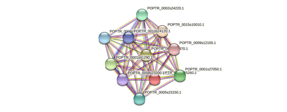 POPTR_0005s25260.1 protein (Populus trichocarpa) - STRING interaction network