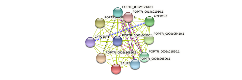 POPTR_0005s25840.1 protein (Populus trichocarpa) - STRING interaction network