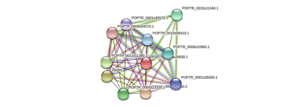 POPTR_0005s26830.1 protein (Populus trichocarpa) - STRING interaction network