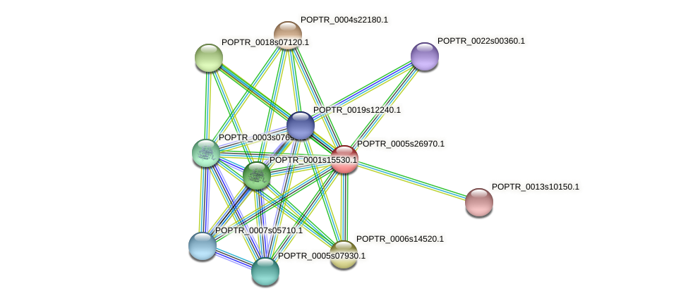 POPTR_0005s26970.1 protein (Populus trichocarpa) - STRING interaction network
