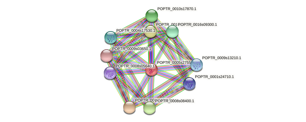 POPTR_0005s27550.1 protein (Populus trichocarpa) - STRING interaction network