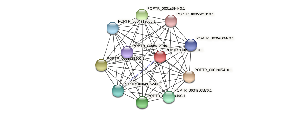 POPTR_0005s27710.1 protein (Populus trichocarpa) - STRING interaction network