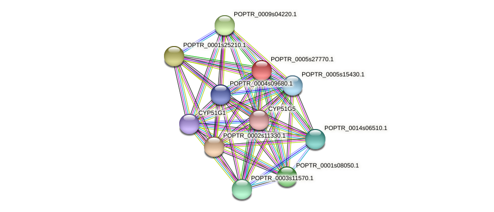 POPTR_0005s27770.1 protein (Populus trichocarpa) - STRING interaction network