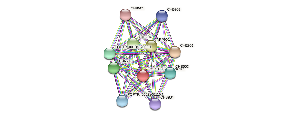POPTR_0005s27870.1 protein (Populus trichocarpa) - STRING interaction network