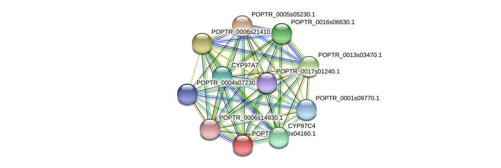 POPTR_0006s04160.1 protein (Populus trichocarpa) - STRING interaction network