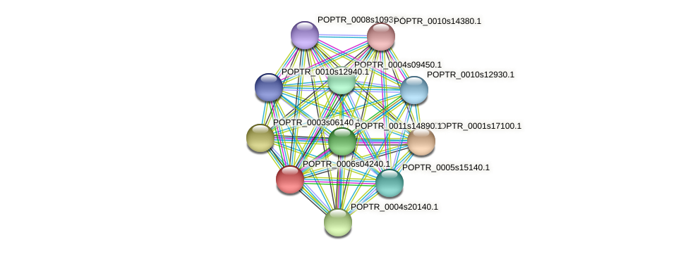 POPTR_0006s04240.1 protein (Populus trichocarpa) - STRING interaction network