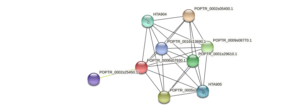 POPTR_0006s07930.1 protein (Populus trichocarpa) - STRING interaction network