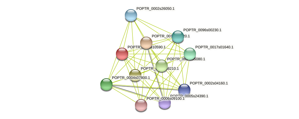 POPTR_0006s10590.1 protein (Populus trichocarpa) - STRING interaction network