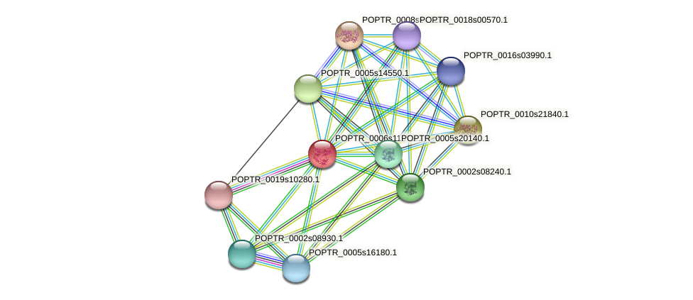 POPTR_0006s11570.1 protein (Populus trichocarpa) - STRING interaction network