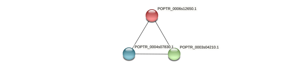 POPTR_0006s12650.1 protein (Populus trichocarpa) - STRING interaction network