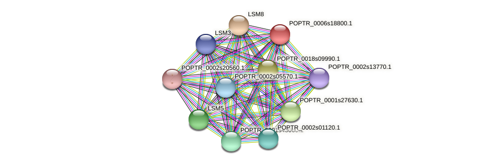 POPTR_0006s18800.1 protein (Populus trichocarpa) - STRING interaction network