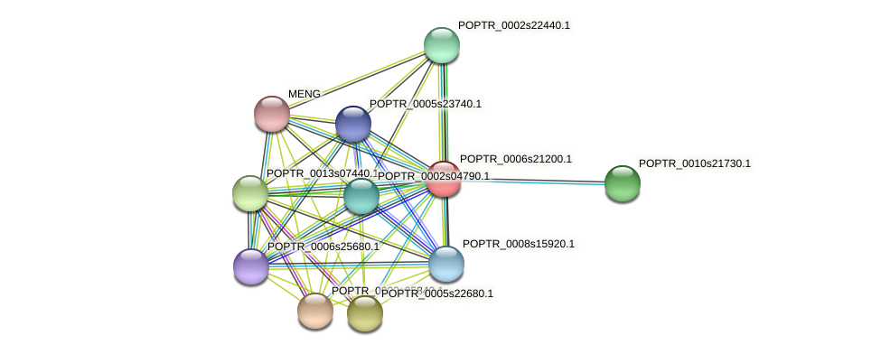 POPTR_0006s21200.1 protein (Populus trichocarpa) - STRING interaction network