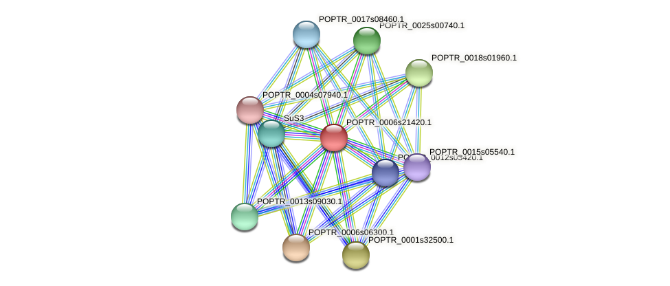 POPTR_0006s21420.1 protein (Populus trichocarpa) - STRING interaction network