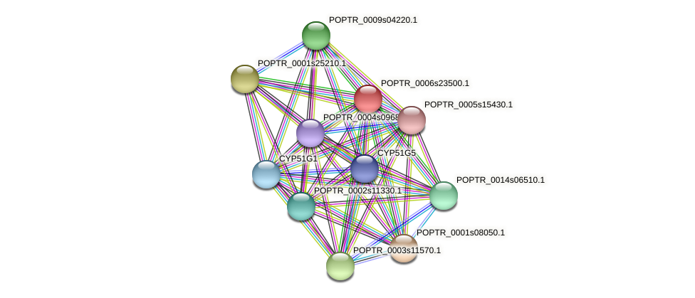 POPTR_0006s23500.1 protein (Populus trichocarpa) - STRING interaction network