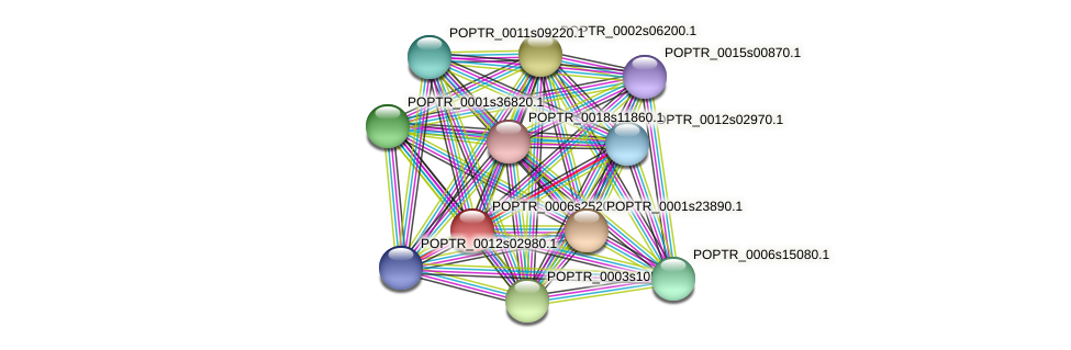 POPTR_0006s25200.1 protein (Populus trichocarpa) - STRING interaction network