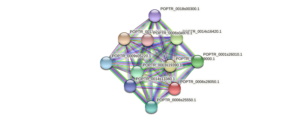 POPTR_0006s28050.1 protein (Populus trichocarpa) - STRING interaction network