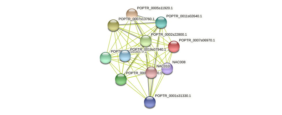 POPTR_0007s06970.1 protein (Populus trichocarpa) - STRING interaction network