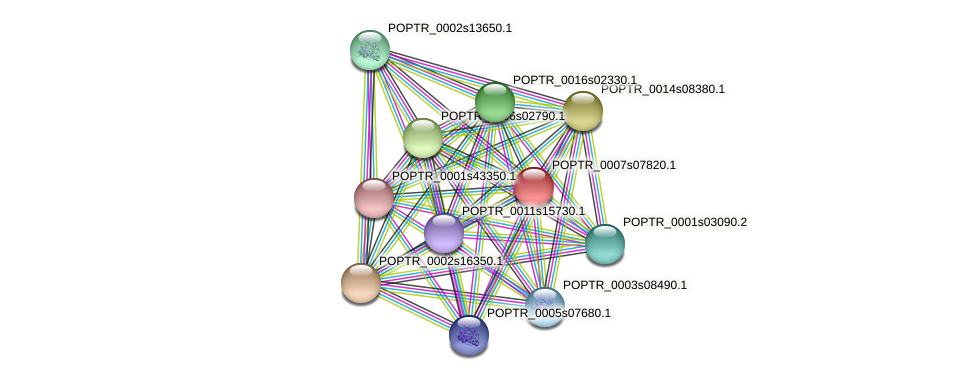 POPTR_0007s07820.1 protein (Populus trichocarpa) - STRING interaction network