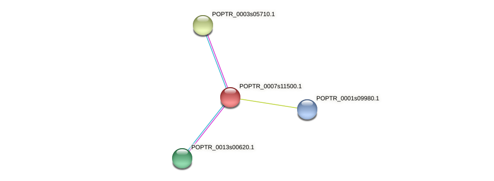 POPTR_0007s11500.1 protein (Populus trichocarpa) - STRING interaction network