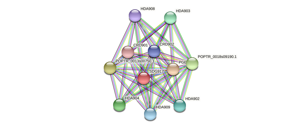 POPTR_0007s12130.1 protein (Populus trichocarpa) - STRING interaction network