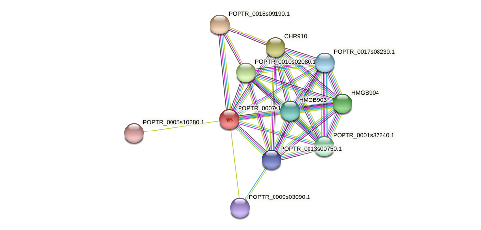POPTR_0007s12520.1 protein (Populus trichocarpa) - STRING interaction network