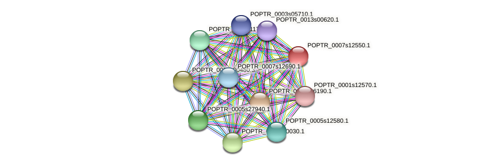 POPTR_0007s12550.1 protein (Populus trichocarpa) - STRING interaction network