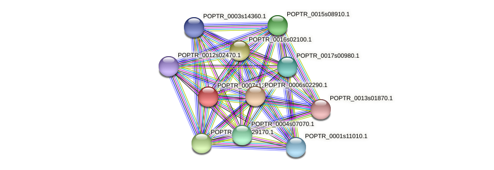 POPTR_0007s12870.1 protein (Populus trichocarpa) - STRING interaction network