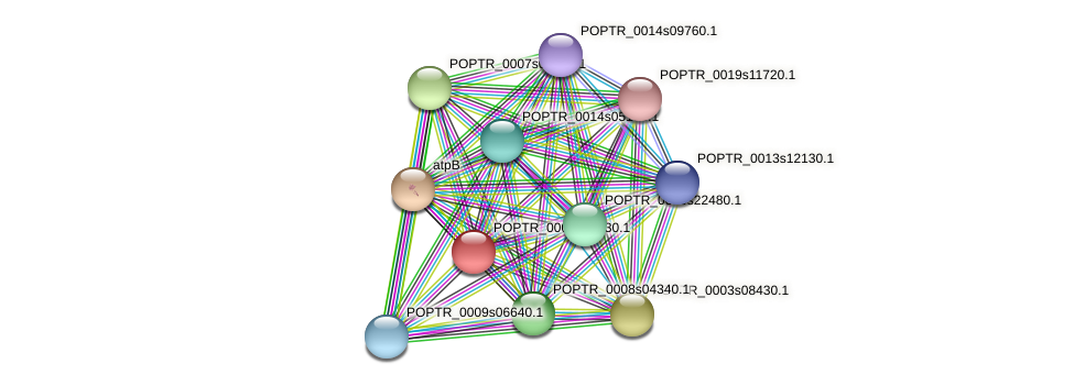 POPTR_0008s00930.1 protein (Populus trichocarpa) - STRING interaction network