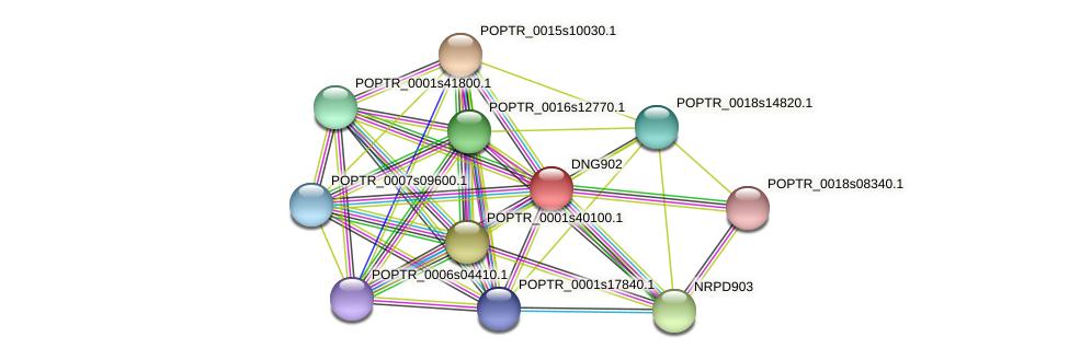 POPTR_0008s02610.1 protein (Populus trichocarpa) - STRING interaction network