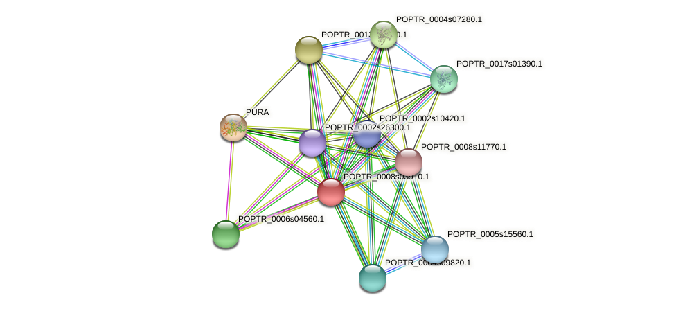 POPTR_0008s03910.1 protein (Populus trichocarpa) - STRING interaction network