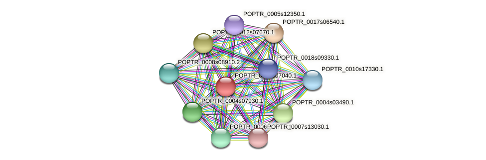 POPTR_0008s07040.1 protein (Populus trichocarpa) - STRING interaction network