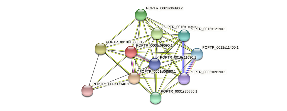 POPTR_0008s09690.1 protein (Populus trichocarpa) - STRING interaction network