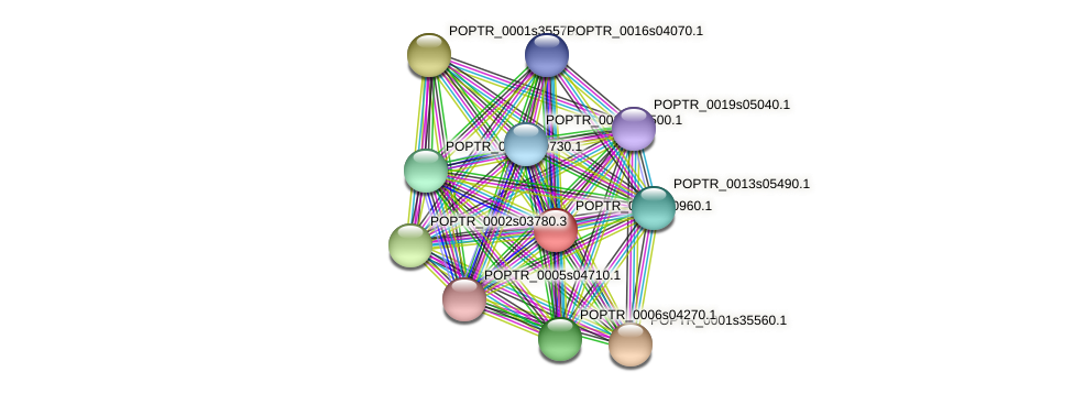 POPTR_0008s10960.1 protein (Populus trichocarpa) - STRING interaction network