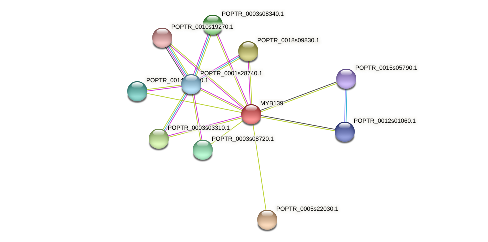 POPTR_0008s18110.1 protein (Populus trichocarpa) - STRING interaction network