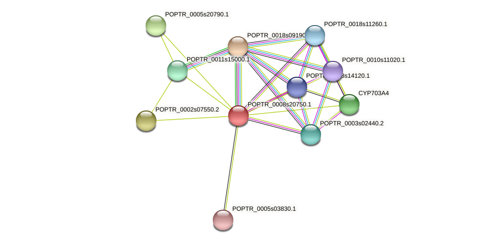POPTR_0008s20750.1 protein (Populus trichocarpa) - STRING interaction network