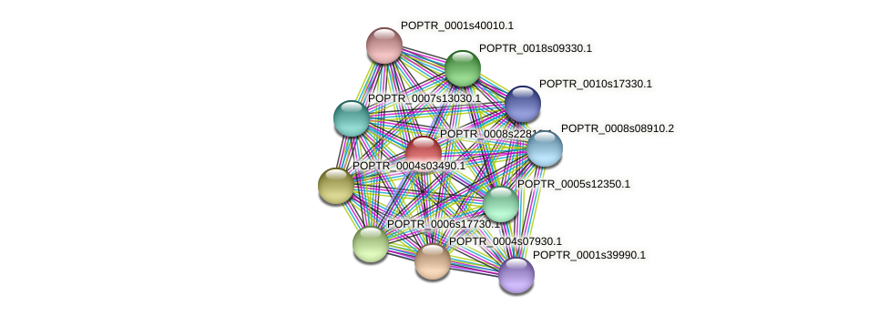 POPTR_0008s22810.1 protein (Populus trichocarpa) - STRING interaction network